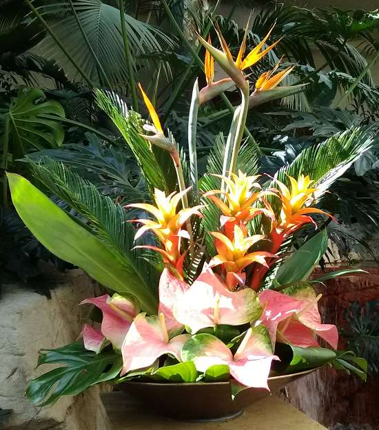 Pic of a floral arrangement on display at The Mirage Resort Casino in Las Vegas featuring the beautiful bird of paradise flower.