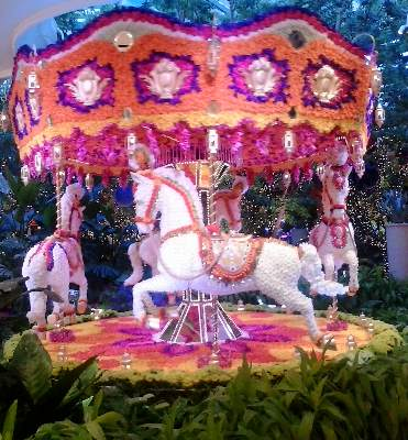 Photo of the fake rose covered carousel in The Atrium area of The Wynn Resort Las Vegas, on The Vegas Strip.